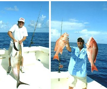 Anna maria island vacation rentals just a little bit of for Florida non resident fishing license cost