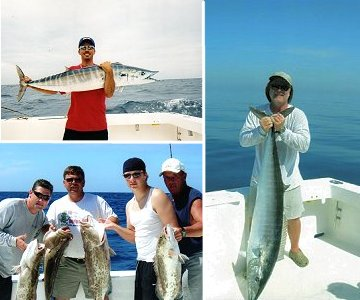 Anna maria island vacation rentals just a little bit of for Florida non resident saltwater fishing license