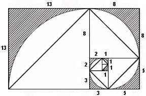 Αποτέλεσμα εικόνας για σπείρα fibonacci